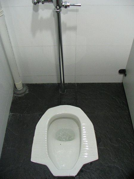 В туалете дырка фото вульвы