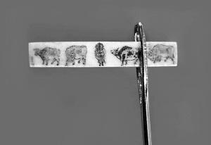 ли цицы, миниатюры