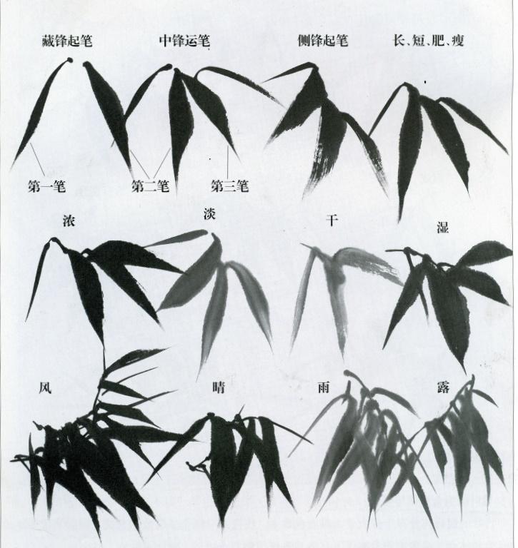 бамбук, учебник по каллиграфии, бамбук каллиграфия, bamboo, bamboo calligraphy