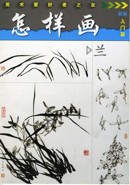 орхидея, учебник по каллиграфии, орхидея каллиграфия, orchid, orchid calligraphy