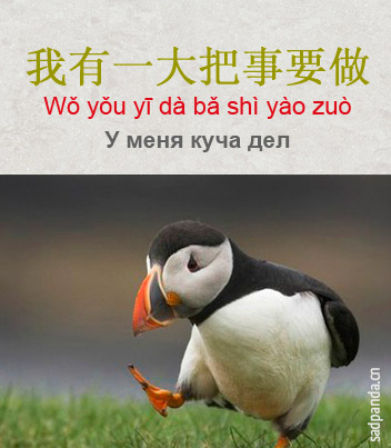 китайские мемы, китайский язык