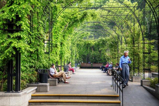 fuxing, fuxing park, fuxing shanghai, shanghai park, шанхай, шанхай парк
