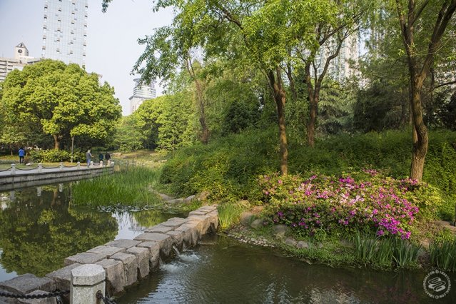 парк, park, shanghai park, парк шанхай